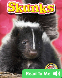 Skunks: Backyard Wildlife