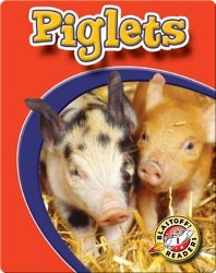 Piglets: Watch Animals Grow