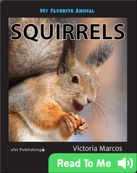 My Favorite Animal: Squirrels