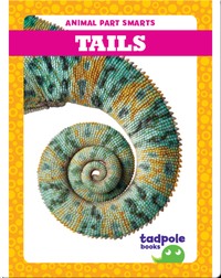 Animal Part Smarts: Tails