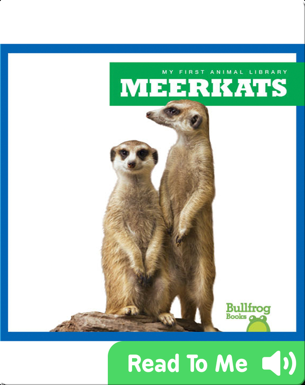 My First Animal Library: Meerkats