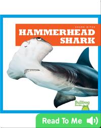 Shark Bites: Hammerhead Shark