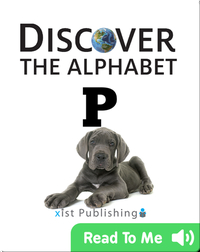 Discover The Alphabet: P