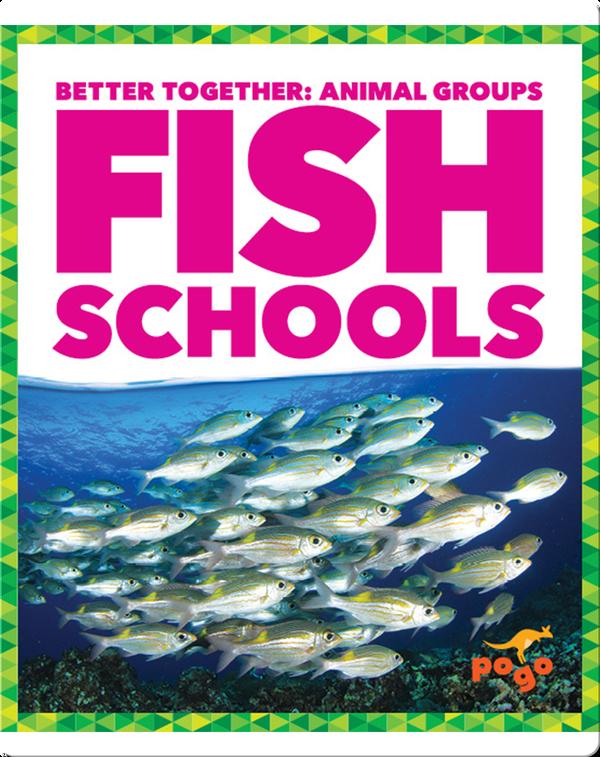 Fish Schools