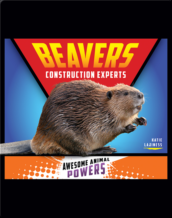Beavers: Construction Experts