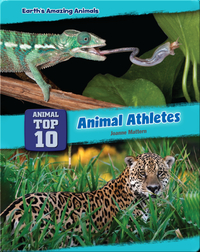 Top Ten Animal Athletes