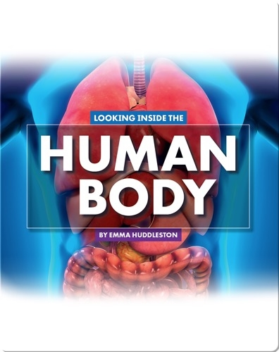 Looking at Layers: Looking Inside the Human Body