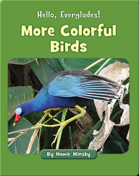 Hello, Everglades!: More Colorful Birds