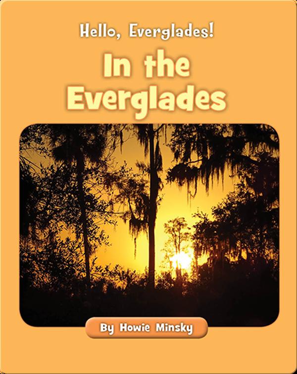 Hello, Everglades!: In the Everglades