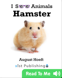 I See Animals: Hamster