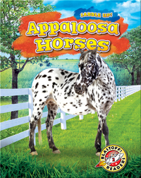 Saddle Up!: Appaloosa Horses