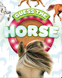Guess the Horse