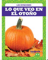 Lo que veo en el otoño (What I See in Fall)