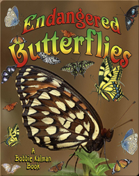 Endangered Butterflies