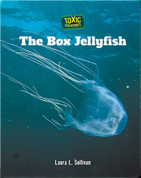 Toxic Creatures: The Box Jellyfish