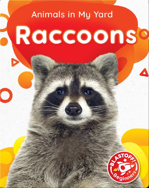 Animals in My Yard: Raccoons