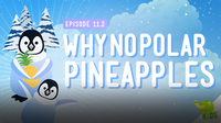 Crash Course Kids: Why No Polar Pineapple