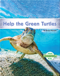 Little Activists: Help the Green Turtles