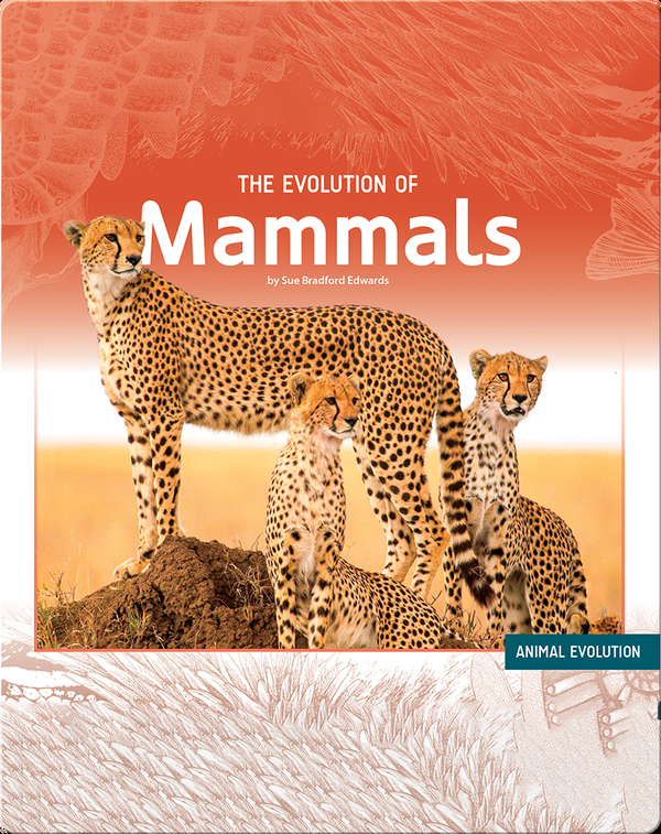 The Evolution of Mammals