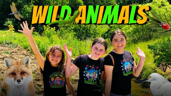 FUN Animal Adventure for Kids! (EXPLORING for WILD Animals!)