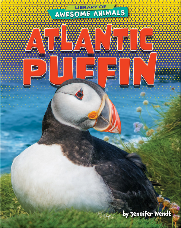 Awesome Animals: Atlantic Puffin