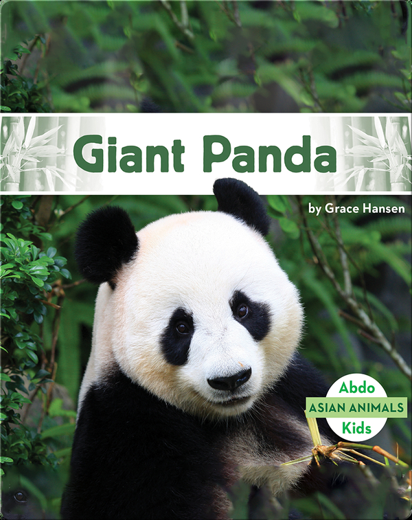 Asian Animals: Giant Panda