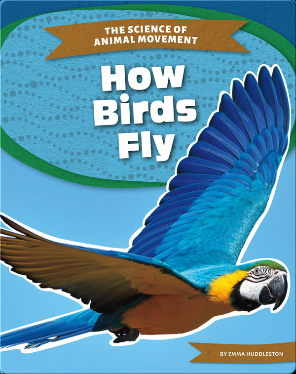 The Science of Animal Movement: How Birds Fly