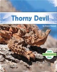 Australian Animals: Thorny Devil