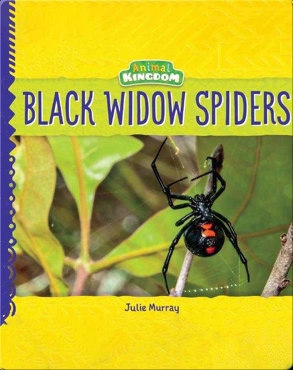 Animal Kingdom: Black Widow Spiders