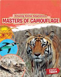 Amazing Animal Adaptations: Masters of Camouflage