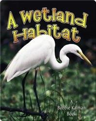 A Wetland Habitat