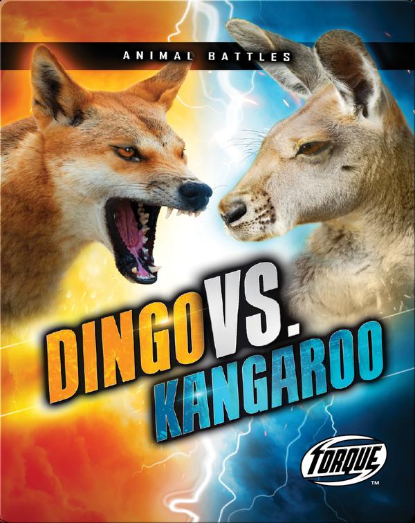 Animal Battles: Dingo vs. Kangaroo