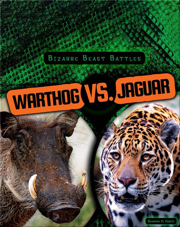 Bizarre Beast Battles: Warthog vs. Jaguar
