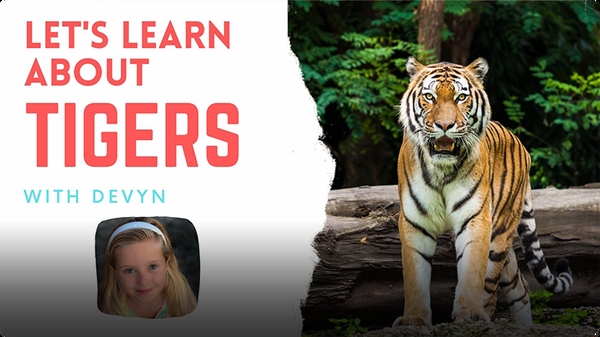 Adventure Family Journal: Let's Learn About Tigers