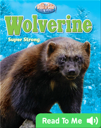 Wolverine: Super Strong
