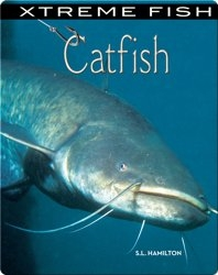 Xtreme Fish: Catfish