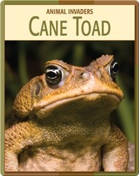 Animal Invaders: Cane Toad