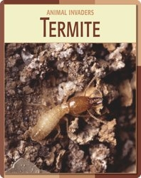 Animal Invaders: Termite