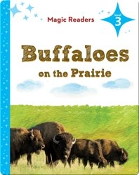 Magic Readers: Buffaloes on the Prairie