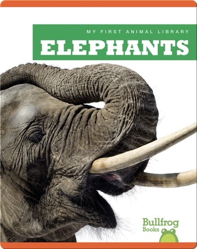 My First Animal Library: Elephants