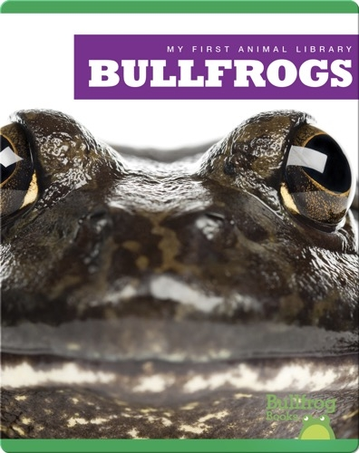 My First Animal Library: Bullfrogs