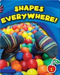 Shapes Everywhere!