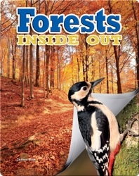 Forests Inside Out