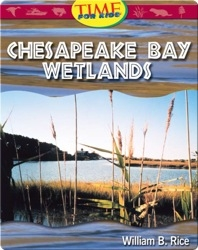 Chesapeake Bay Wetlands: Fluent Plus (Nonfiction Readers)
