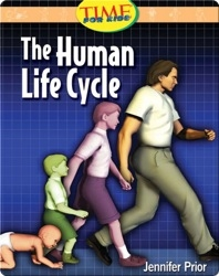 The Human Life Cycle