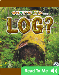 What's In A... Log?