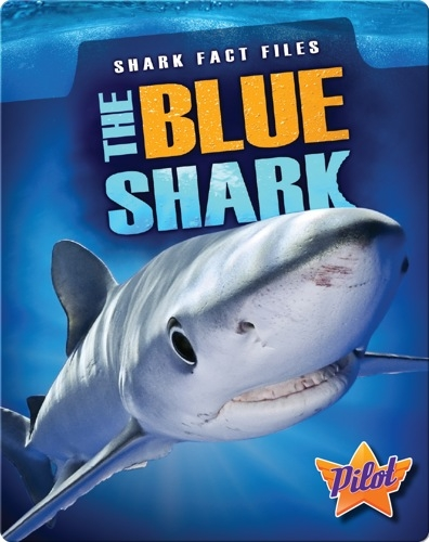 Shark Fact Files: The Blue Shark