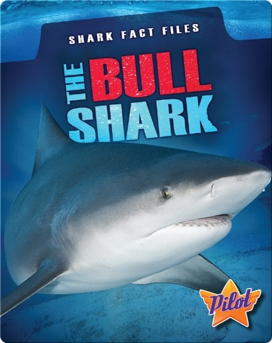 Shark Fact Files: The Bull Shark