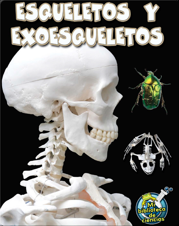 Esqueletos y exoesqueletos