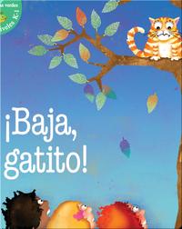 ¡Baja, Gatito! (Kitty Come Down!)